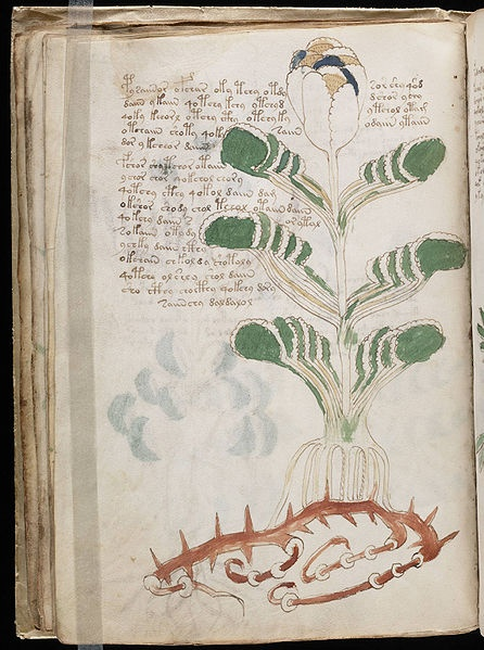 the voynich manuscript essay Papers on the voynich manuscript captain prescott h currier these papers and statistical tabulations by prescott currier originally appeared innew research on the voynich manuscript.