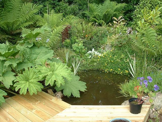 Small Garden Pond Make Your Landscape Interesting With The Use Of A Water  Fountain