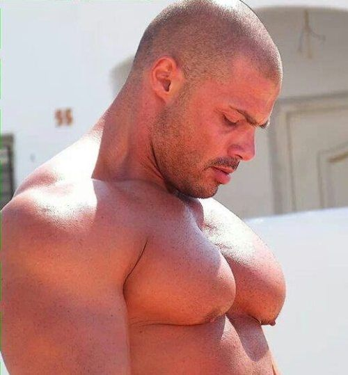 A blog dedicated to the wonderful creatures off the world: men.. Muscle, bear, beef, hairy, bulges,...