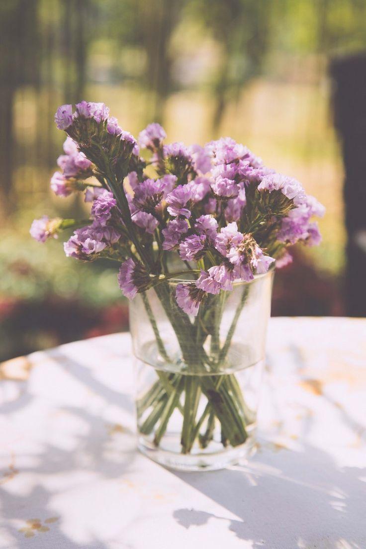 Purple Flowers, Chiang Mai.