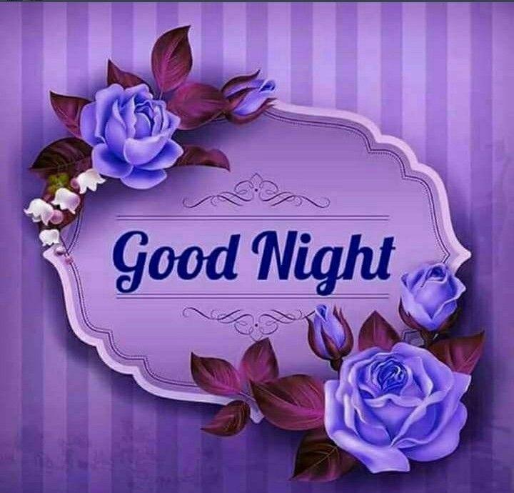 Good Night Friend's x