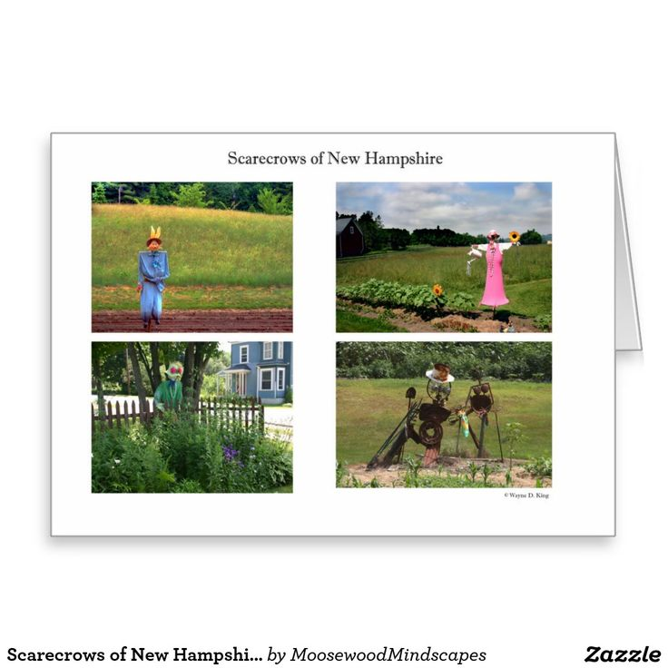 Scarecrows of New Hampshire Greeting Card