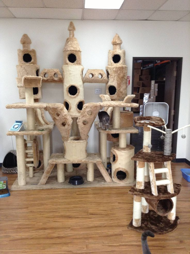 1000 ideas about cat castle on pinterest cat trees for for Castle cat tower