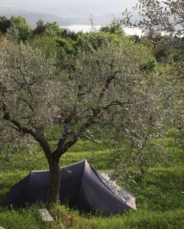 Camping IL FALCONE Loc. Vallonganino, 2/a 05023 Civitella del Lago, Baschi (Terni) UMBRIA - ITALIA