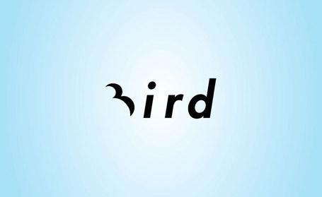 Brilliant Bird logo design