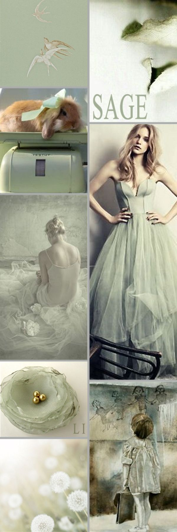 best Sage Green images on Pinterest Green sage Green and Mint