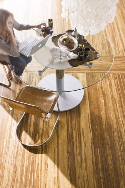 Teragren Synergy Strand Bamboo Floating Floor In Brindle