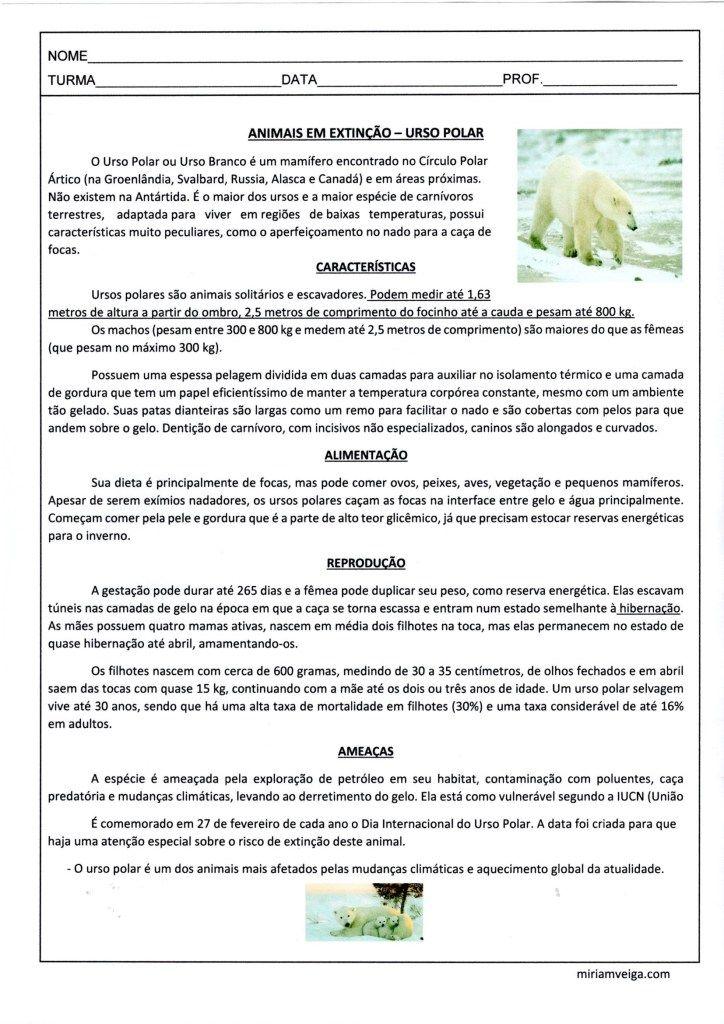 Nesta Atividade O Aluno Pode Aprender Sobre O Urso Polar E Suas