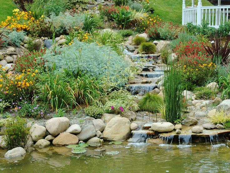 Ponds And Waterfalls · Pond ConstructionPond Water FeaturesBackyard  PondsFish PondsWater GardensPool IdeasWaterfallsPoolsSanta Monica