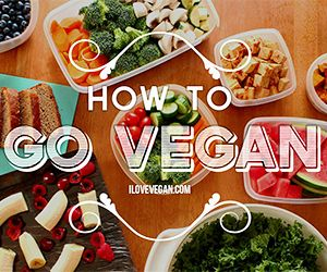How to Grocery Shop for Packing Healthy Lunches To Go (Part 1 of My Guide to Packing Easy Vegan Lunches) » I LOVE VEGAN