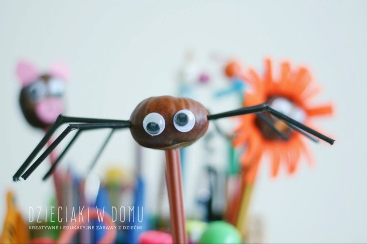 Conker spider craft for kids / pająk z kasztana