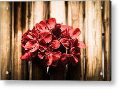 Gone With The Wind Acrylic Print by Cesare Bargiggia