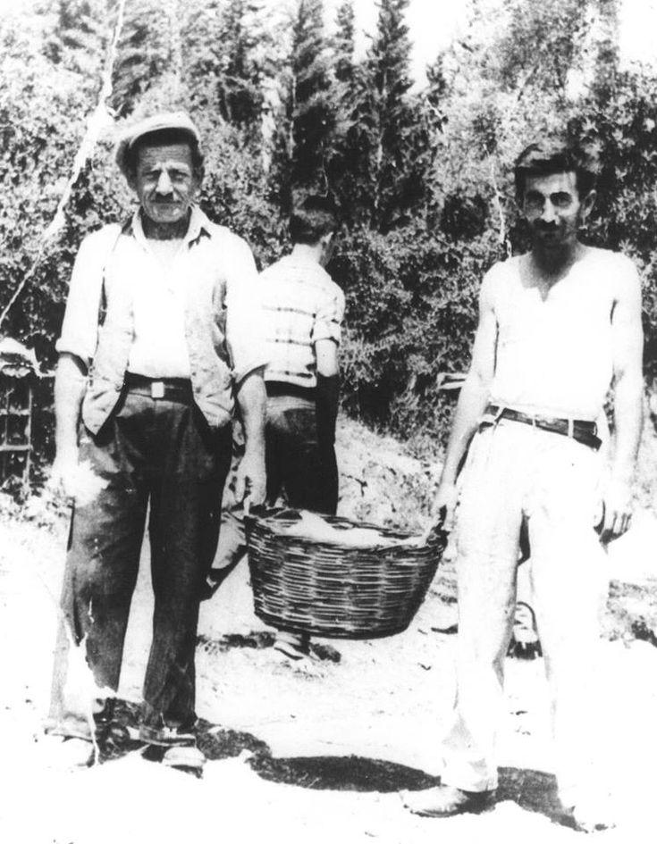 1953. Ο μπάρμπα Στάθης Ζαγορίτης-Κόκκινος & ο Νικόλαος Κουτσαύτης-Μυτώνας διαλαλούν: ' Κουκούτσες, ζεστές κοκούτσες' (αγριοαγγινάρες).