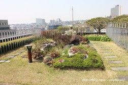 * 서울파트너스하우스의 옥상정원