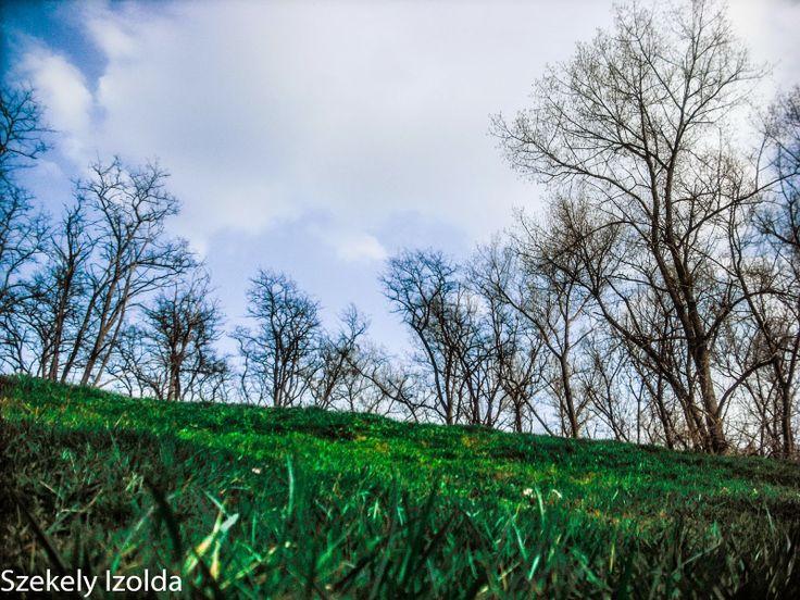 Multimédia kör Téka: Mert a természet szép