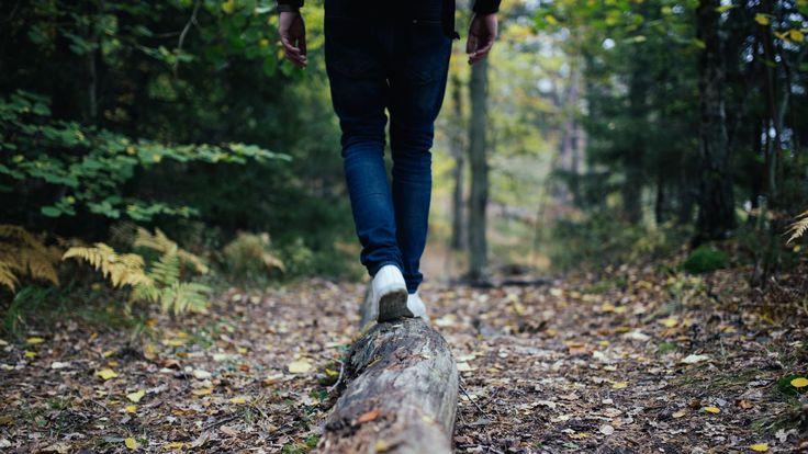 Swap the pavement for bush tracks, coastal walks and mountain peaks.