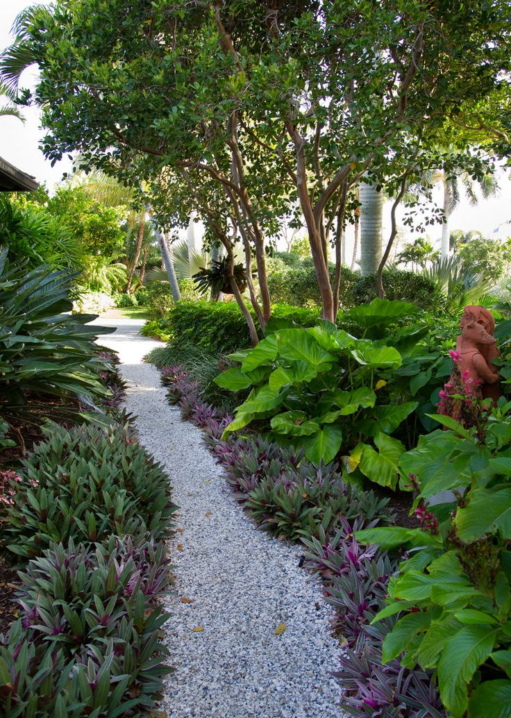 Best 25 small tropical gardens ideas on pinterest for Tropical landscape