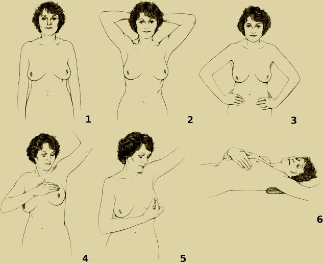 Breast Self Examination: Regular Exam for Breast Health