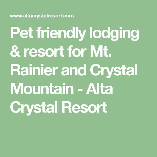 Pet friendly lodging & resort for Mt. Rainier and Crystal Mountain - Alta Crystal Resort