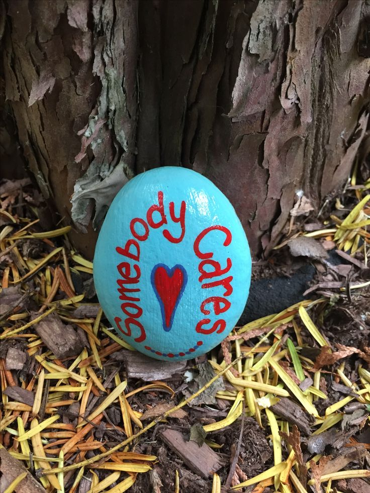 Somebody Cares. Hand painted rock by Caroline. The Kindness Rocks Project