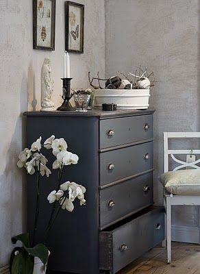 Distressed walls, botanical/entomology prints, black dresser.