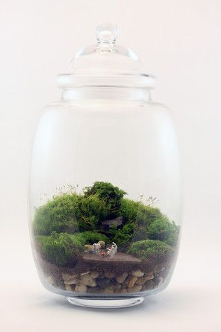 Forensics in the Flora by Twig Terrariums. They have such a neat twist on the old terrariums.