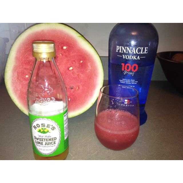 Watermelon Slush - simple! Fresh cubed watermelon, vodka, Rose's and ...
