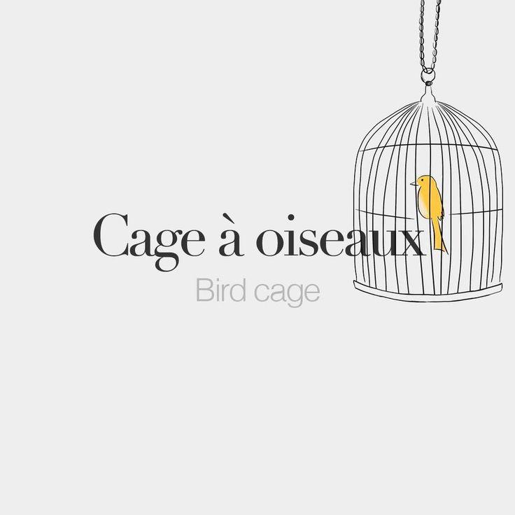 """Cage à oiseaux (feminine word) | Birdcage | /kaʒ a wa.zo/  Drawing: @beaubonjoli."""