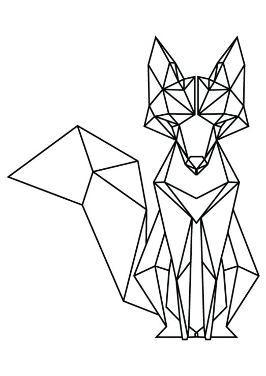geometric fox - Google Search