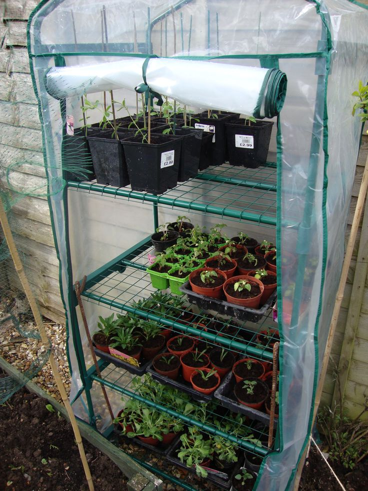 17 best images about diy greenhouses on pinterest for Homemade greenhouse plastic