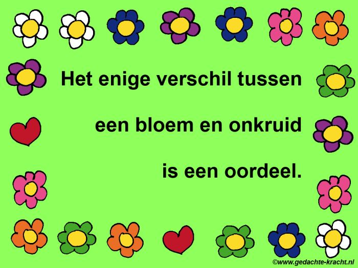 The only difference between a flower and weed is a judgment. www.gedachte-kracht.nl