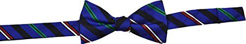 Ben Sherman Mens Bow Necktie Morton Stripe Blue