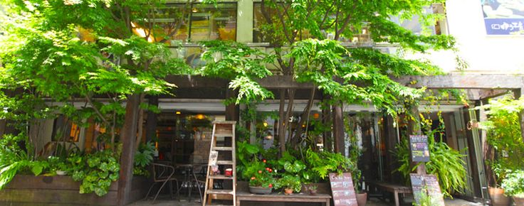 梅田店|梅田の癒しカフェ,ランチ