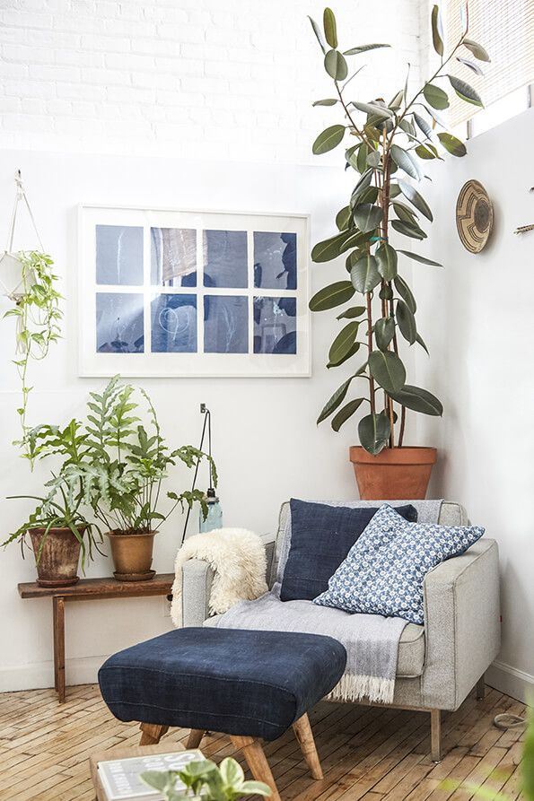 cozy corner chair with lots of plants