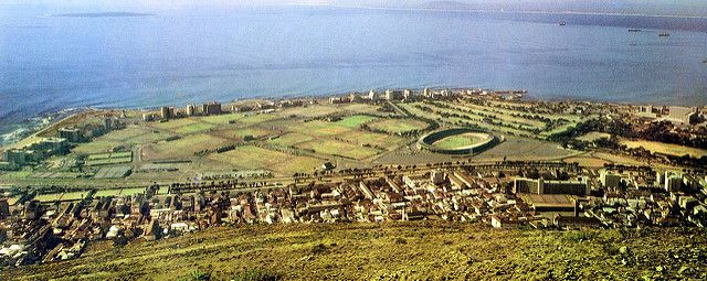 Green Point         1980.