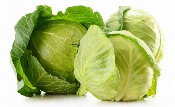 Gyógyító növényeink  A káposzta egyik legkitűnőbb rákellenes táplálékunk (A MAGYARSÁG A MAG NÉPE)