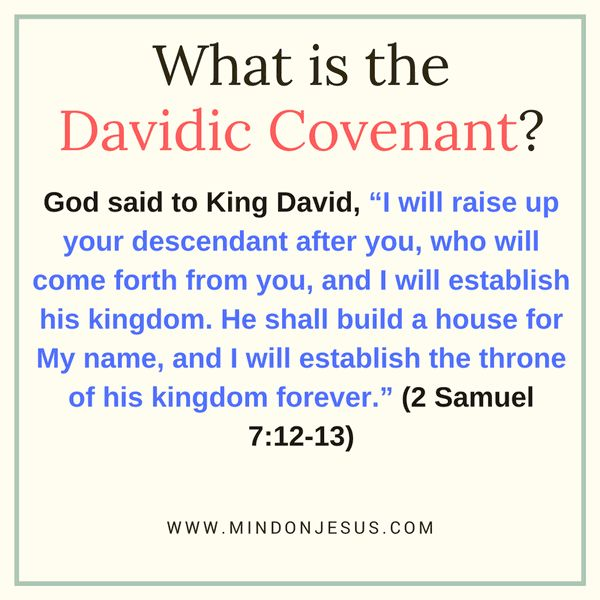 "The Davidic Covenant is an unconditional covenant, for it was God who initiated its establishment, not David. It's fulfillment through the ""promised seed""."