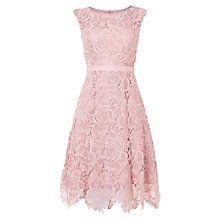 Buy Phase Eight Rose Lace Fit and Flare Dress, Powder Online at johnlewis.com
