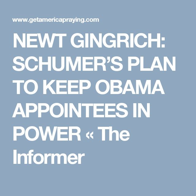NEWT GINGRICH: SCHUMER'S PLAN TO KEEP OBAMA APPOINTEES IN POWER «  The Informer