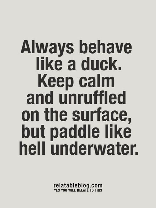 """Keep calm and unruffled on the surface, but paddle like hell underwater"""