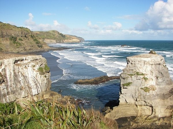 Muriwai Beach near the Gannet Colony lookout