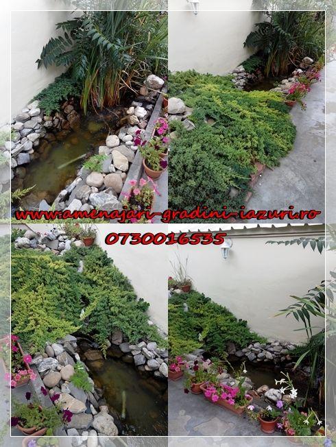 Iaz de gradina  www.amenajari-gradini-iazuri.ro 0730016535