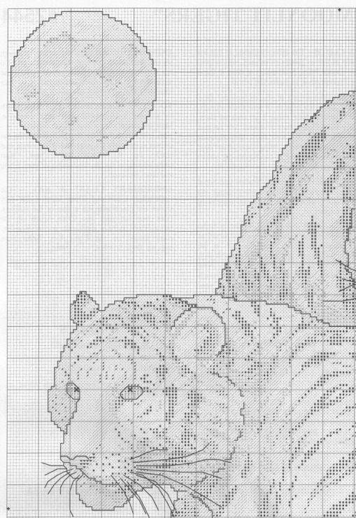moonlit tigers 4/7