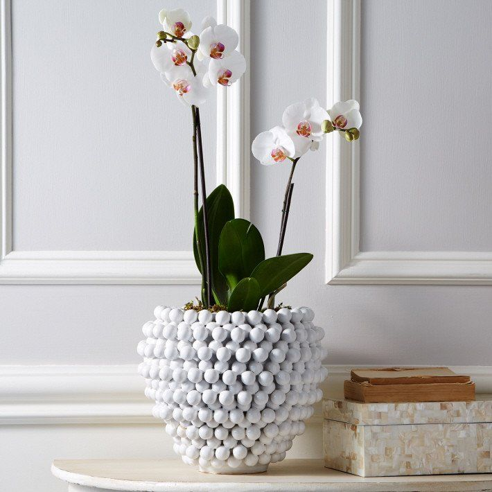 Pompon Vase/Planter design by Tozai | BURKE DECOR