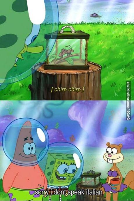 Haha I forgot so many of the great Spongebob one-liners lol