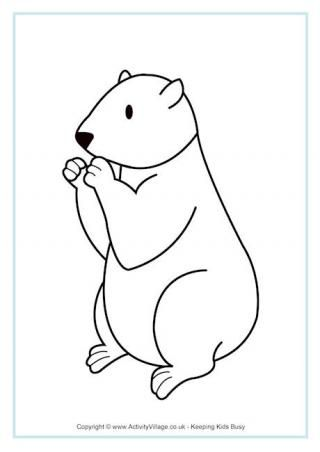 groundhog coloring pages preschool truck - photo#26