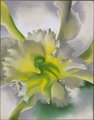Georgia O'Keeffe. An Orchid. (1941)