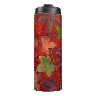 Colorful Autumn Leaves Brown Red Green Tumbler Thermal Tumbler #Travel