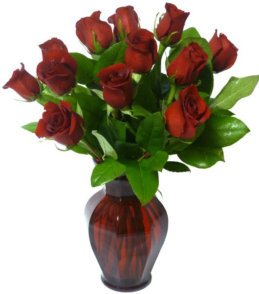 A beautiful bouquet of roses to recognize that special someone in your life. Order yours from Ottawa Flowers today!    Happy Valentine's Day!