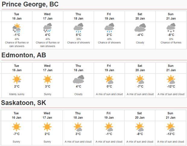 'Pulse' of subtropical air brings 18 C January weather to British Columbia's coast - British Columbia - CBC News